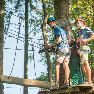 adventure course in trees
